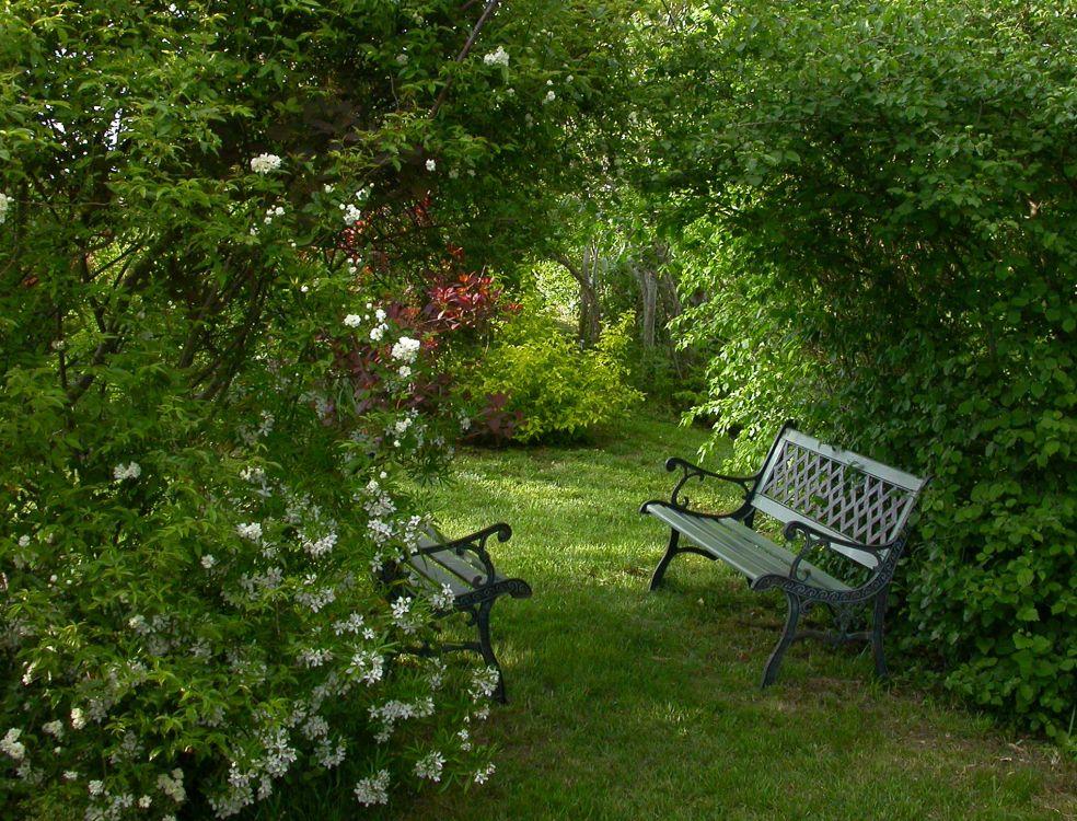 recherche tout conseil page 2 au jardin forum de jardinage. Black Bedroom Furniture Sets. Home Design Ideas