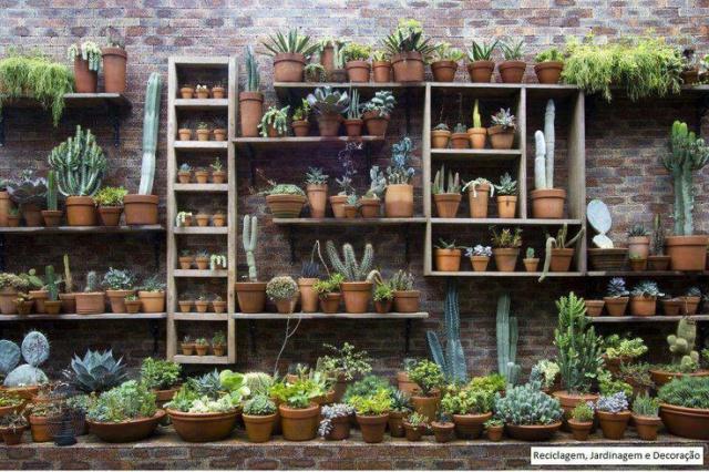 conseils d 39 amenagement d 39 un mur et autres au jardin forum de jardinage. Black Bedroom Furniture Sets. Home Design Ideas