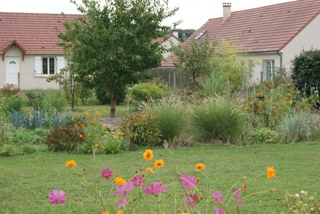 cerisier ou figuier au jardin forum de jardinage. Black Bedroom Furniture Sets. Home Design Ideas