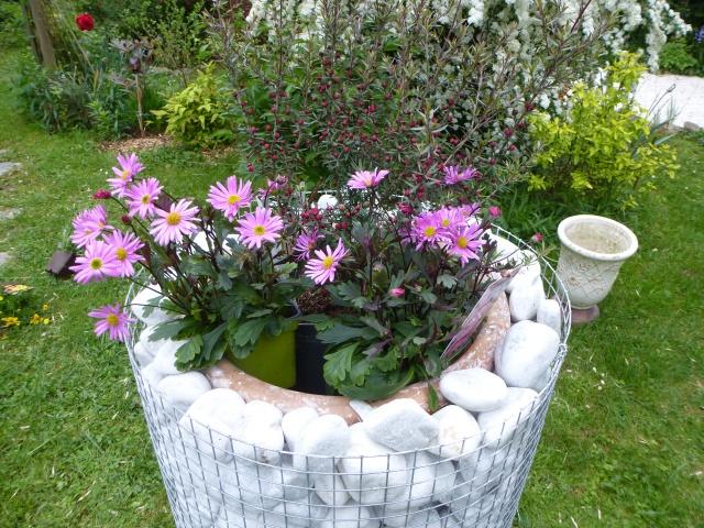 D co jardin page 31 au jardin forum de jardinage for Jardinage decoration jardin