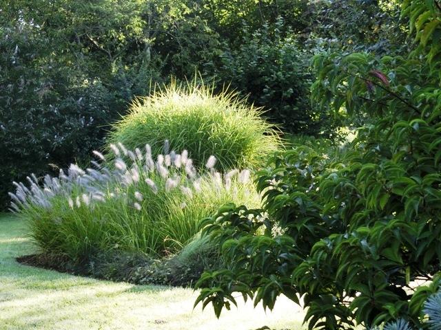 40700 poudenx dans les landes le jardin d 39 eden au jardin forum de jardinage. Black Bedroom Furniture Sets. Home Design Ideas