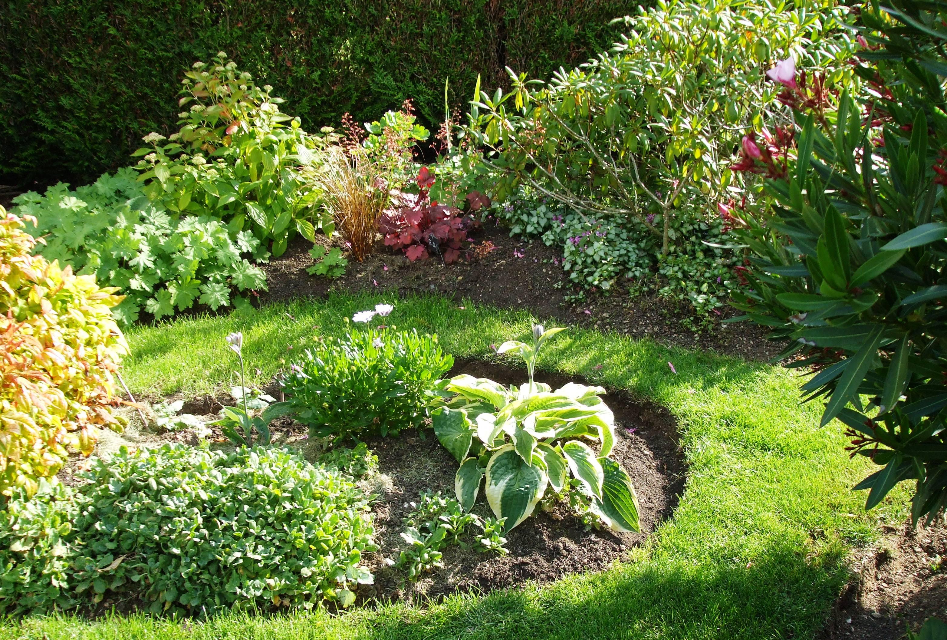 qu 39 avez vous fait au jardin d 39 ornement aujourd 39 hui page 249 au jardin forum de jardinage. Black Bedroom Furniture Sets. Home Design Ideas