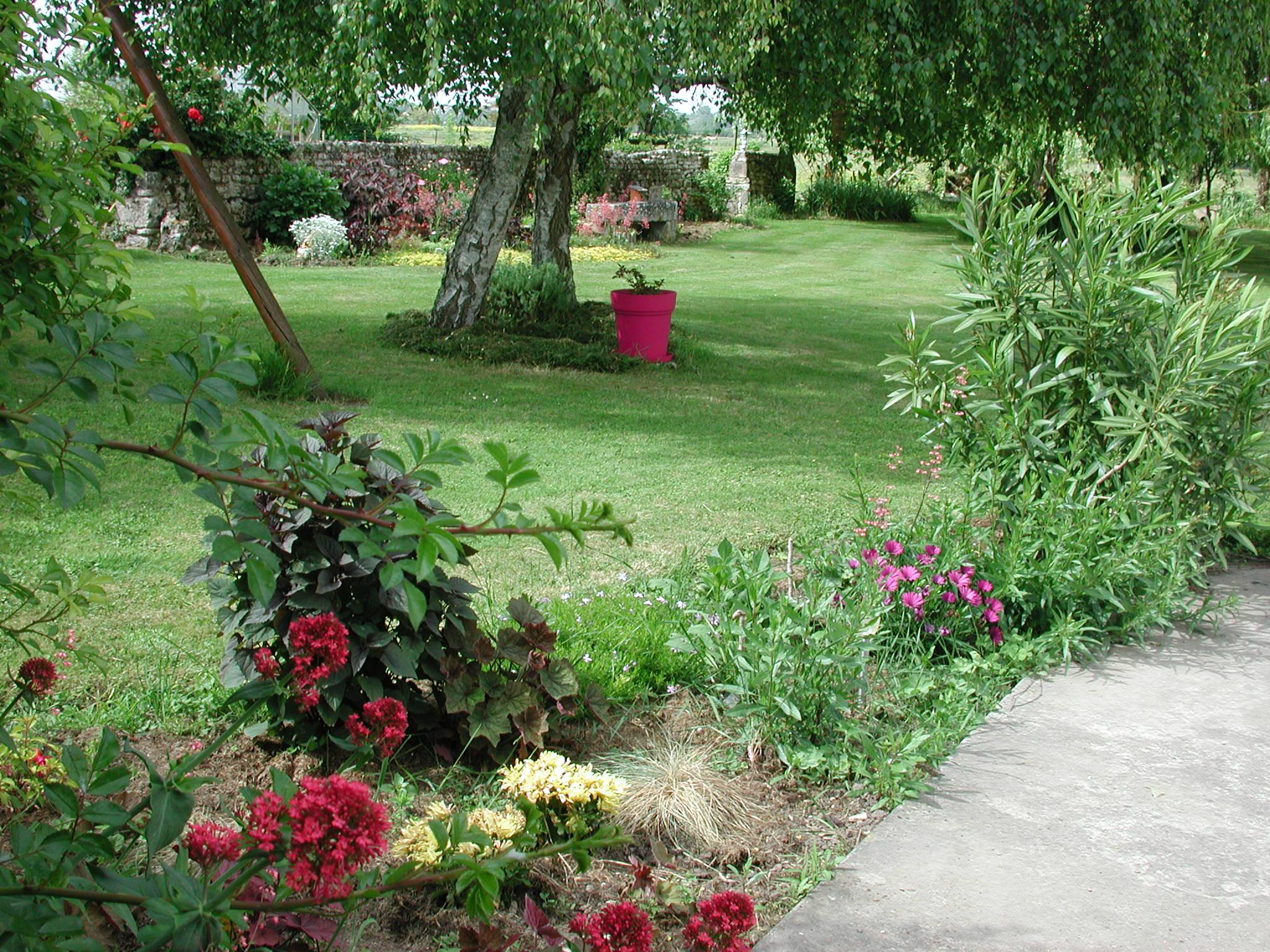le printemps arrive page 25 au jardin forum de jardinage. Black Bedroom Furniture Sets. Home Design Ideas