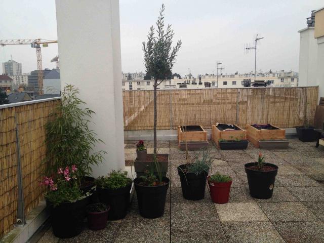 Am nagement terrasse sud ouest 45 m2 page 5 au jardin - Prix amenagement comble 60 m2 ...