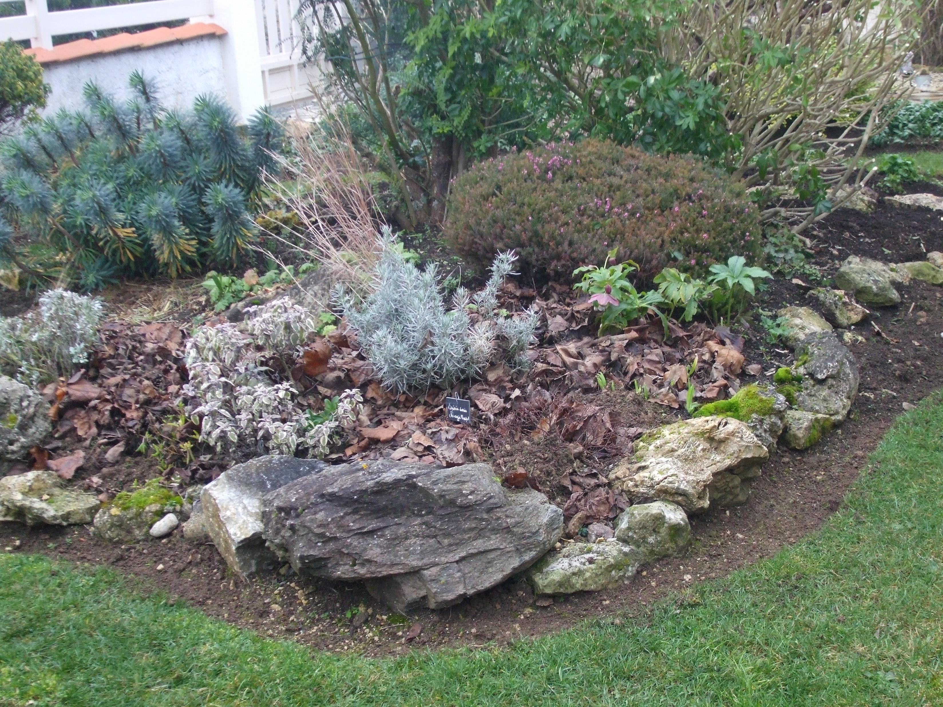 Un massif refaire svp page 19 au jardin forum de - Creer un jardin aromatique ...
