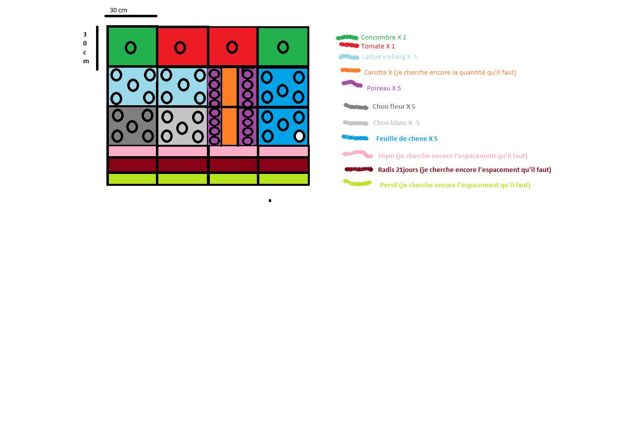 cr ation d 39 un potager en carr page 6 au jardin forum de jardinage. Black Bedroom Furniture Sets. Home Design Ideas